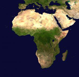 Variant covid 19 africain